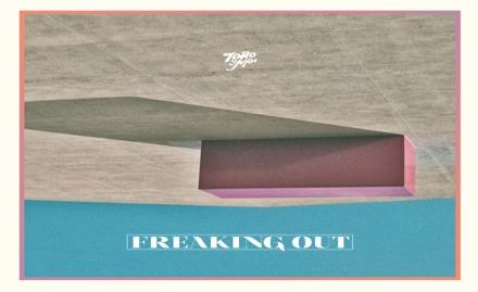Toro Y moi Carpark Records